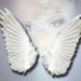 Malakim � Os Arcanjos e Anjos