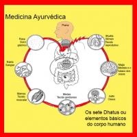 Estruturas semiológicas da Medicina Ayurvédica - IV