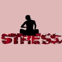 Hatha Yóga, uma arma poderosa contra a ansiedade e o stress
