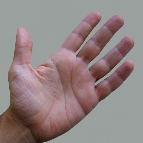 Quirologia: A arte de adivinhar o futuro das pessoas pelo exame das linhas da mão