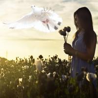 Paz-interior, para compreender, e vencer conflitos